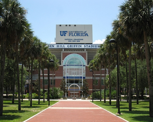佛罗里达大学录取!